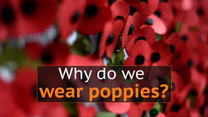 why do people wear poppies to mark armistice day in the uk youtube