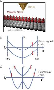 visualizing majorana fermions in a chain of magnetic atoms on a