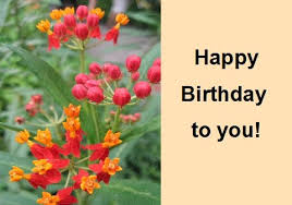 ecards free birthday zodiac ecards free birthday ecards