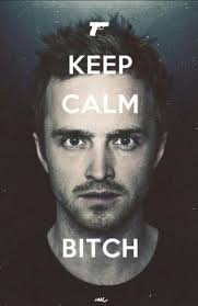 Jesse Pinkman Meme - bitch lol laugh pinterest breaking bad malta and profile