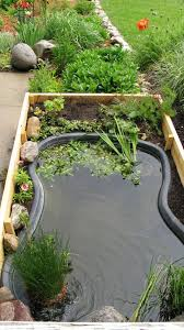 Small Backyard Fish Pond Ideas Elegant Interior And Furniture Layouts Pictures Raised Koi Pond