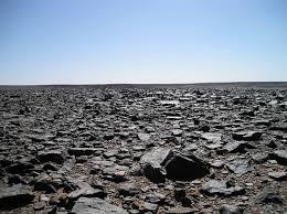 stone desert stone desert поиск в google srtr plc pinterest tiger design