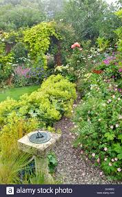 suburban front garden in july with sundial gravel path flowering