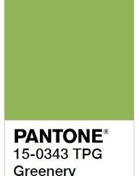 paint color highlight homes
