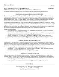 resume programmer cio chief information officer resume