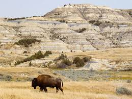 North Dakota national parks images Theodore roosevelt national park nd travel around usa jpg