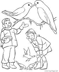 dolphin coloring pages feeding dolphins coloring