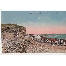 chambre d hote criel sur mer maison proche de criel sur mer à 300 m de la plage location de