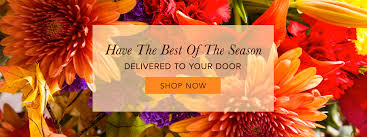 Flowershop Stanley Florist Flower Delivery By Forget Me Not Flower Shop