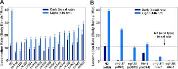 liquid light guide a novel molecular solution for ultraviolet light detection in