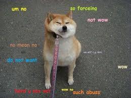 Create Doge Meme - fresh 18 best doge memes images on pinterest wallpaper site