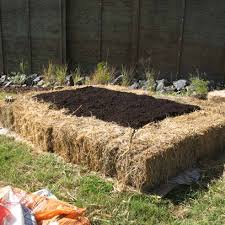 backyard vegetable garden house design with straw bales and soil