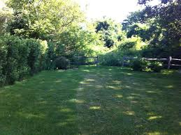 Backyard Bird Sanctuary by In Town Nantucket Cottage Abuts Bird Homeaway West Of Town