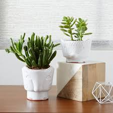 animal planter figurative animal planters west elm