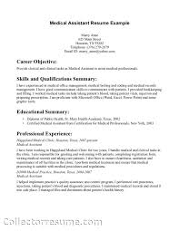 Resume Writers Houston Esl Reflective Essay Writers For Hire Thesis Order Online Cover