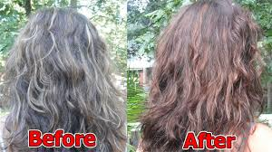 coconut oil and lemon remedy it reverses gray hair back to its