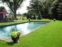 Inground Swimming Pool Designs Ideas Magnificent Best 25 Pool Swim Pool Designs