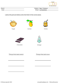 primaryleap co uk our five senses worksheet