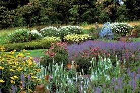 attract pollinators and other vegetable garden ideas farm and