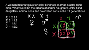 Chromosome Color Blindness How To Solve X Chromosome Linked Genetics Problems Youtube