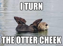 Otter Memes - funny otter meme otter best of the funny meme