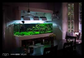 Aquascape Shop Aquascape2015 U201cmaintenance On Client Aquarium By Viktorlantos On