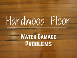 hardwood floor water damage certified restoration