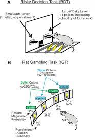 deciphering decision making variation in animal models of effort