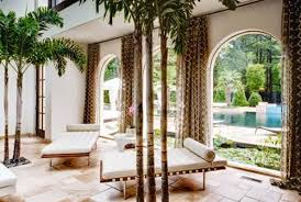 what you need to about the different types of palm tree decor