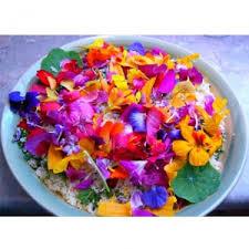 cuisiner les fleurs cuisiner avec les fleurs tambouille tout