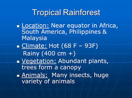 Tropical Rainforest Plant List - biomes terrestrial only tropical rainforest desert grassland