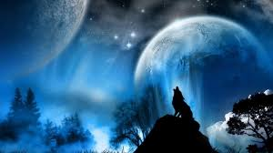 why do wolves howl at the moon salimovgeidar