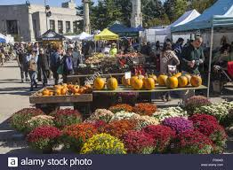 autumn day at the grand army plaza farmers market in park slope