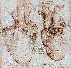 download da vinci heart tattoo danielhuscroft com