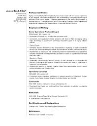 business analyst resume exles business analyst resume sle bond