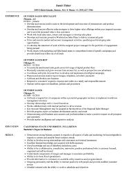 outside sales resume exles outside sales resume sles velvet