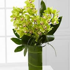 Orchid Delivery Huntington Florist Flower Delivery By Funky Flower Shop