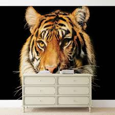 28 tiger wall mural wholesale animal tiger 3d wall mural tiger wall mural tiger wall mural for your home buy at europosters