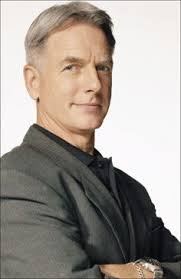 whats the gibbs haircut about in ncis gibbs ncis haircut hairstyles ideas pinterest ncis and haircuts