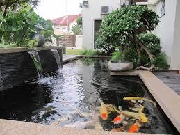 koi fish ponds designs essential features of koi pond design