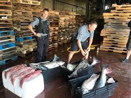 environmental police canal fishermen broke striper rule news