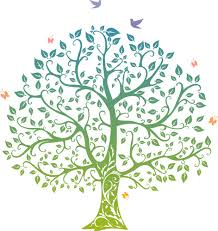 the tree of life wicca daily