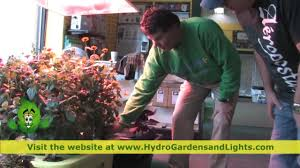 hydro gardens u0026 lights ohio u0027s largest hydroponic and organic