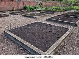 Vegetable Beds Kitchen Vegetable Garden Raised Beds Stock Photo Royalty Free