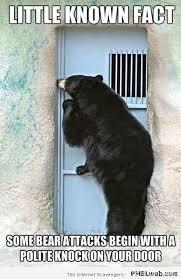Door Meme - 14 bear knocking at your door meme pmslweb