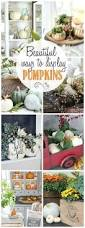 thanksgiving pumpkin crafts 1226 best pumpkin crafts images on pinterest halloween pumpkins