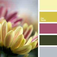 276 best colors images on pinterest colors color palettes and