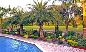 Florida Backyard Landscaping Ideas Landscape Ideas South Florida Backyard Landscaping Design Ideas