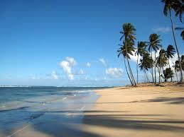 best tourist excursions in dominican republic ocean adventures