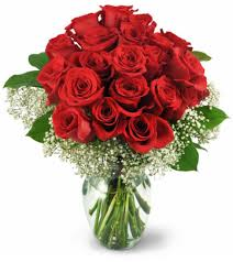 how much does a dozen roses cost two dozen roses halifax ns florist